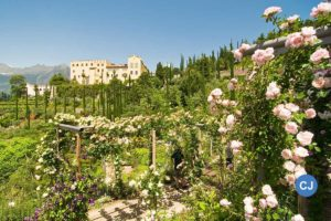 Frühling im Meraner Land: Blütenfesttage in Lana